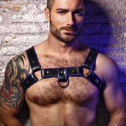 Shoulder Harness/ring hook...