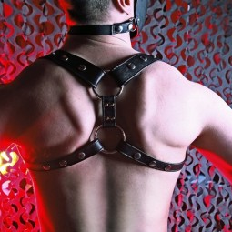Pistol harness - black
