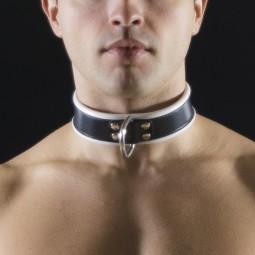 Leather Collar 1D (4.5cm...
