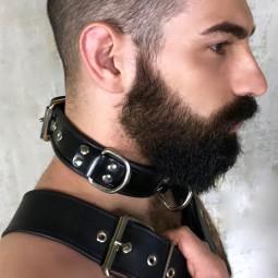 Leather Collar 3D (4.5cm...